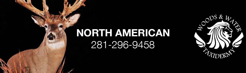 north_american