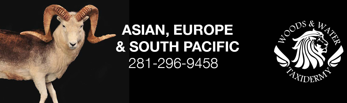Asian_Europe_and_South_Pacific