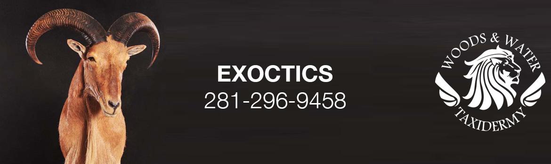 exoctics